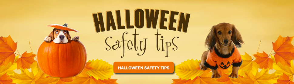 halloween-saftey-tips